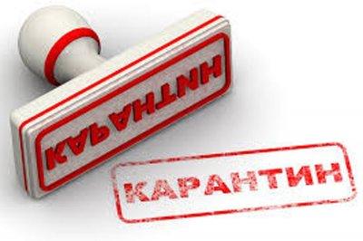 Ограничительные мероприятия по ОРВИ и гриппу продлены ещё на одну неделю
